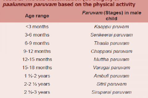 The sub classification (10 stages) of paalunnum paruvam based on the physical activity