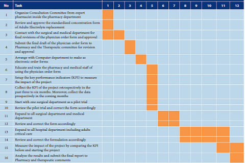 Implementation steps of the standardized concentration of adults' electrolyte replacement therapy.